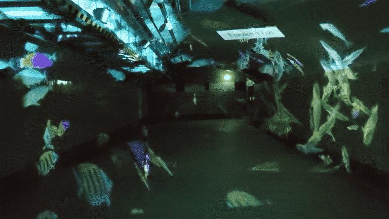 Schillernde Unterwasserwelt in der Bahnhofsunterführung